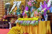 Tăng đoàn và Phật tử chùa Giác Ngộ tiếp tục tụng kinh, tưởng niệm đức Đệ tam Pháp chủ GHPGVN - Đại lão Hòa thượng Thích Phổ Tuệ