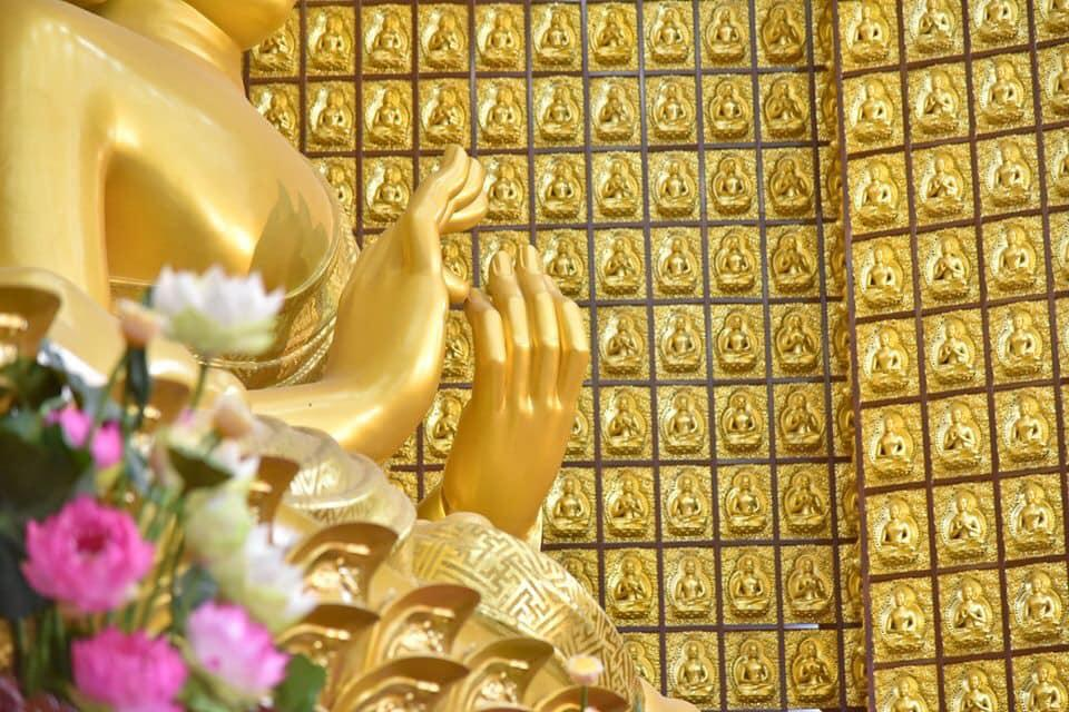 khoá tu Thiền Tứ Niệm Xứ ngày 23-10-2019